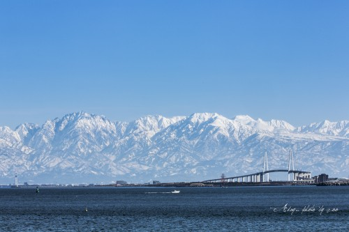 新湊大橋の画像 p1_10